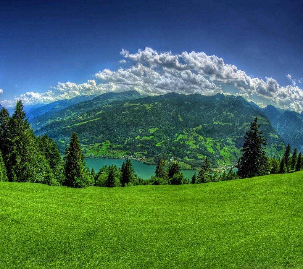 Grass-Hill-Mountain-Nature-Sky-Tree Wallpaper Background