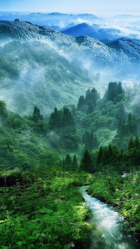 Nature Wallpaper Background