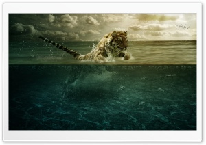 Tiger Playing in Water Ultra HD Wallpaper for 4K UHD Widescreen desktop, tablet & smartphone